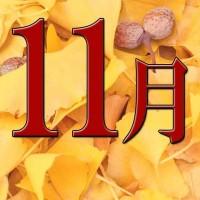 11月トマタク会社説明会